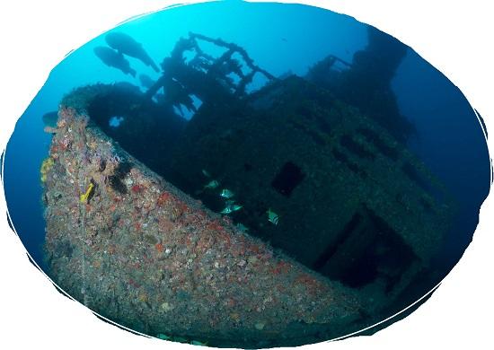 Dive The M/v Castor