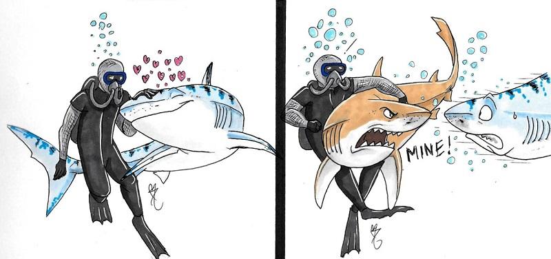 Lemon Shark Aggregation Dive in Jupiter!